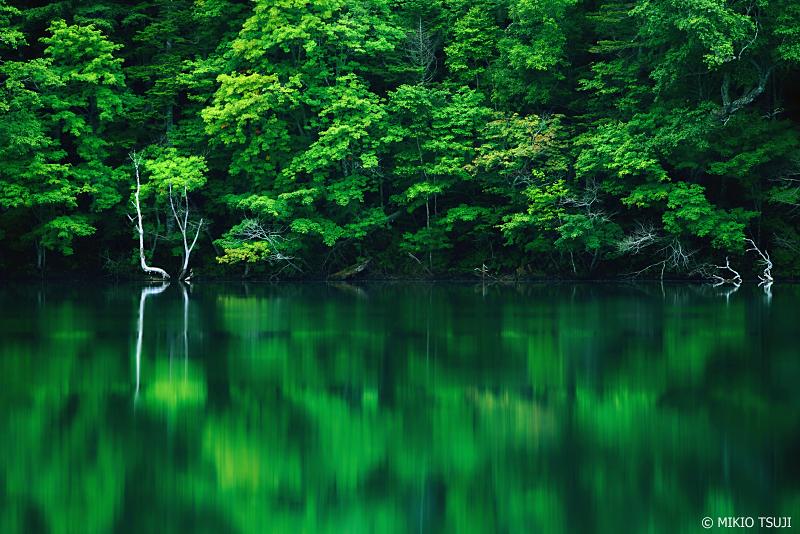 絶景探しの旅 - 1044 緑の世界を映す湖 (オンネトー/北海道 足寄町)